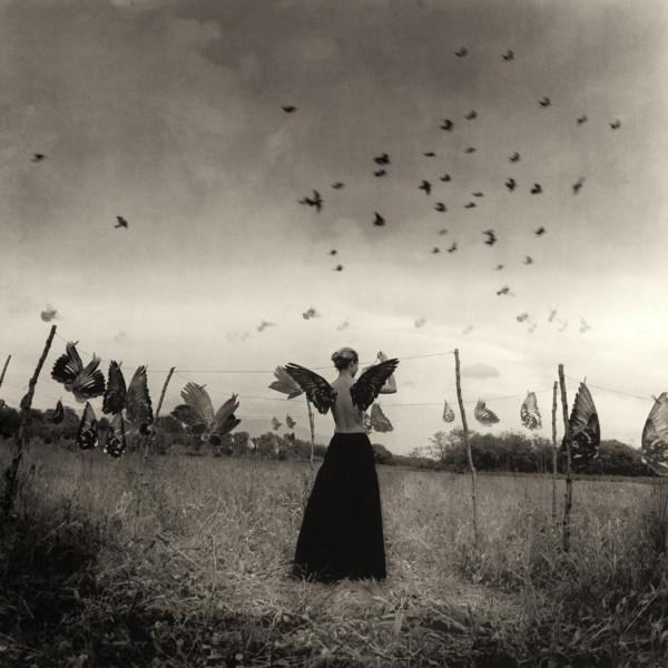 Roberto Kusterle - Le ali dei sogni