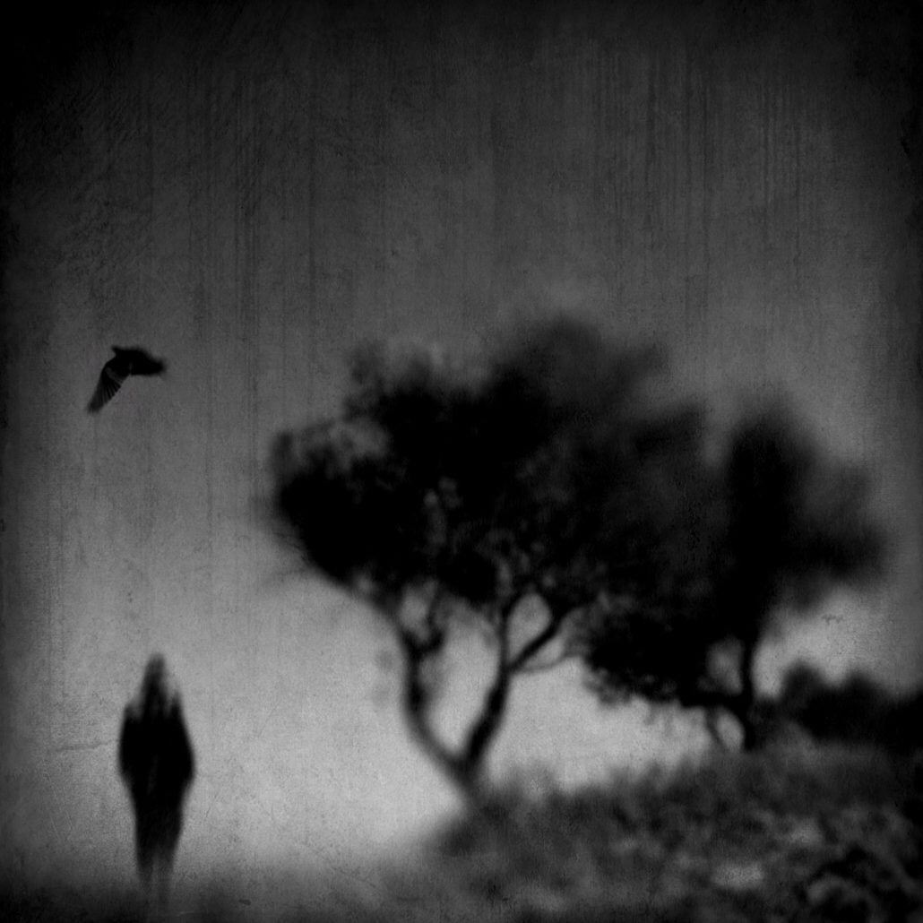 Carmelita Lezzi, photography, ethereal, dark, obscure, black and white